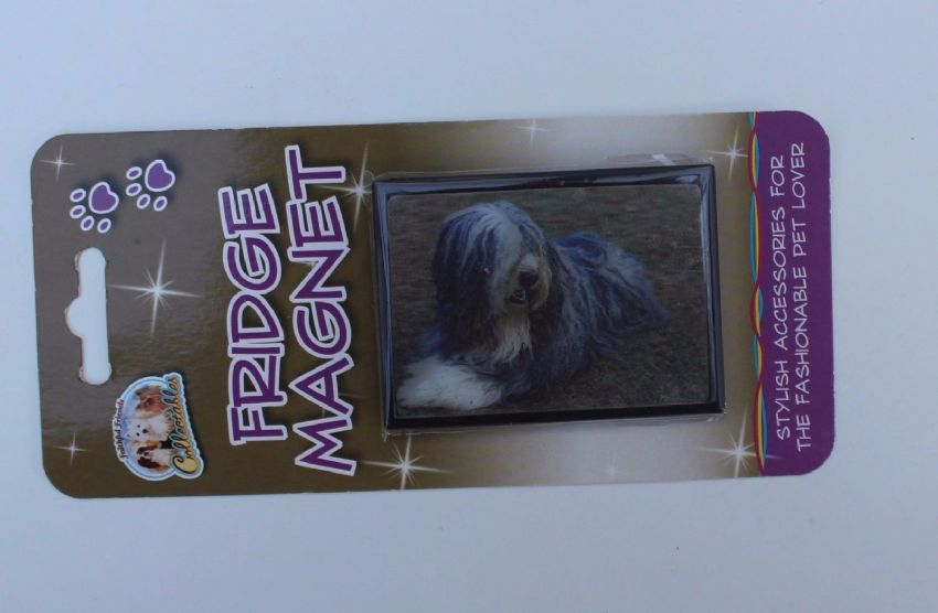 Bearded Collie 3D fridge magnet